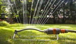 watering lawn sprinkler