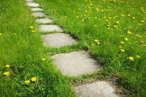 Pathway weed control