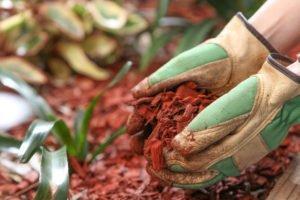 weed control garden mulch