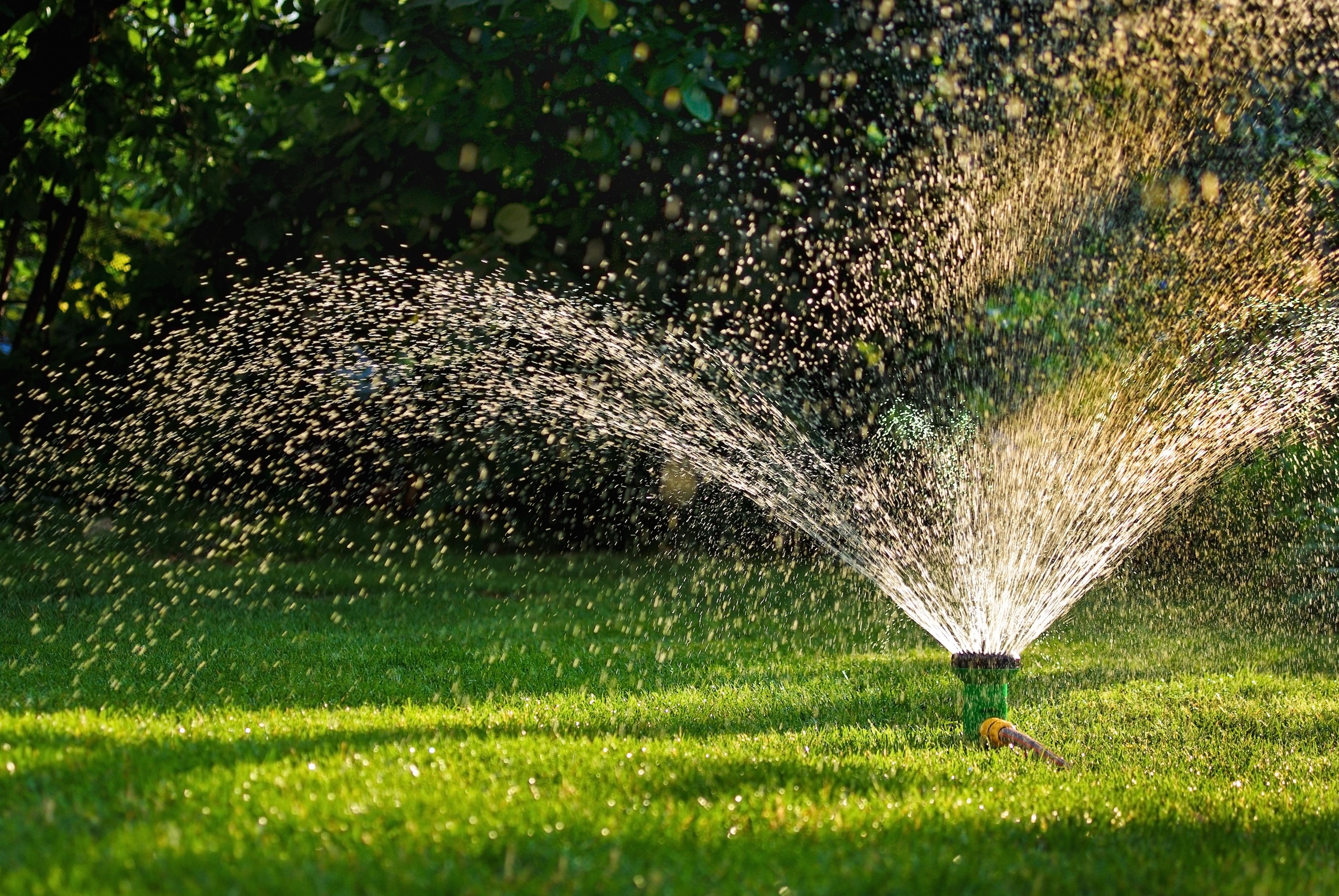 water sprinkler watering grass