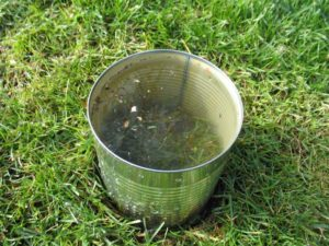 chinch bug water can