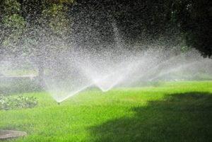 Yard Sprinkler