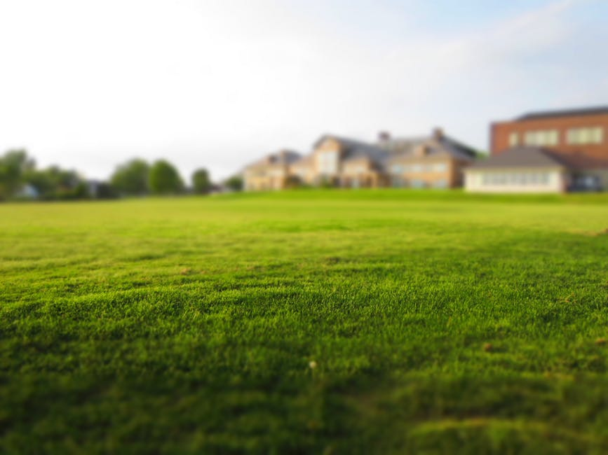 grass services in greater toronto area